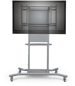 mobile tv cart